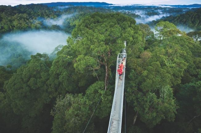 brunei-temburong-canopy-walkway-01